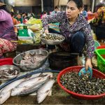 Cambodian Cuisine: A Taste of Culture