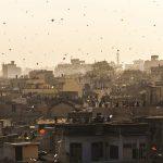 India's Massive Kite Festival