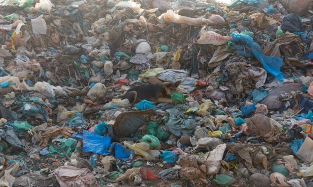 Trash Talk: Asia is Not Your Dumping Ground