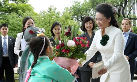Peng Liyuan: More Than Just China's First Lady